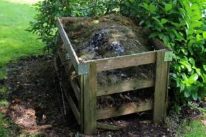 Worm Composting_ Gardening and Resilience
