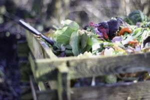 Worm Composting in Winter