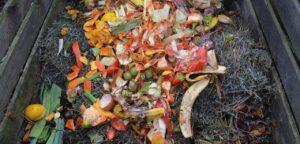 wormcomposting